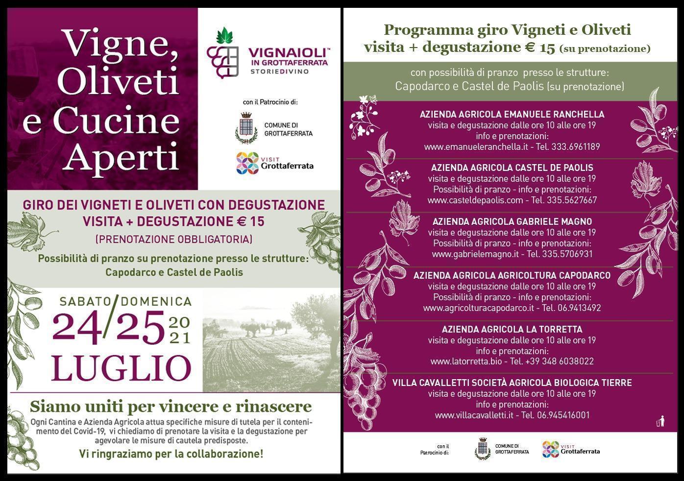 Vigne, Oliveti e Cucine Aperti - Luglio 2021